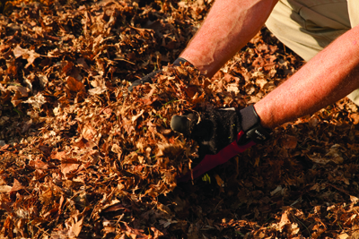 The DR Leaf and Lawn Vacuum makes, rich, organic mulch.
