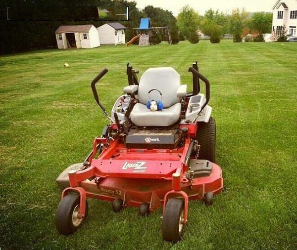 funny-mouse-mowing-the-lawn