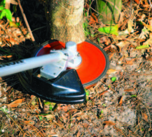 4 Tools To Make Clearing Overgrown Land Easy And Even Fun Dr S Country Life Blog